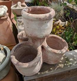 Blumentopf rustikal echt Terrakotta ca. 25x25 cm, Kräutertopf Blumenkübel Garten Terracotta Deko Kräuterspirale - 1