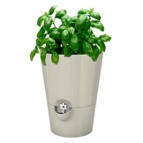 Emsa Kräutertopf für frische Kräuter, Selbstbewässerung, Wasserstandsanzeiger, Ø 13 cm, Seidengrau, Fresh Herbs, 517532 - 1