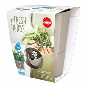 Emsa Kräutertopf für frische Kräuter, Selbstbewässerung, Wasserstandsanzeiger, Ø 13 cm, Seidengrau, Fresh Herbs, 517532 - 3