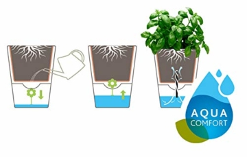 Emsa Kräutertopf für frische Kräuter, Selbstbewässerung, Wasserstandsanzeiger, Ø 13 cm, Seidengrau, Fresh Herbs, 517532 - 4