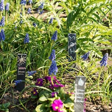 Navaris 10x Schiefer Pflanzstecker M - Gartenstecker Stecketiketten beschreibbar 20 x 3cm für Kräutergarten Beet Blumenkästen Schilder mit Kreide - 3